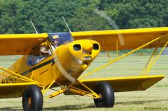 Airplane forum for Cub Enthusiasts J3 Cub, Piper Aircraft, Bush Plane, Float Plane, Airplanes, Cubs, Wings, Passion, Aircraft