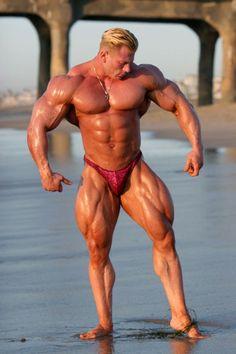muscle building workouts http://allabout-bodybuilding.blogspot.com/