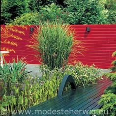 Rood accent in de tuin, via Modeste Herwig