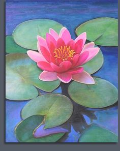 Water Lily by Anna Coulter.