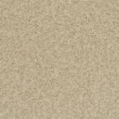 Stainmaster Informal Affair China Rectangular Indoor Tufted Area Rug (