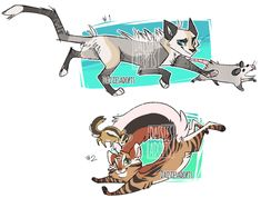 A-Z Warrior cat name ideas for your brave cat, # cute food diy garten witzig Warrior Cat Names, Warrior Cat Drawings, Warrior Cats Fan Art, Z Warriors, Character Art, Character Design, Cat Oc, Cat Reference, Cat Design