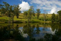 Grahamstown, Grey dam, South Africa South Africa, Golf Courses, Saints, Wildlife, City, Places, Happy, Beauty, Santos