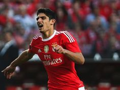 VÍDEO: o agradecimento do Benfica a Gonçalo Guedes Sports, Tops, Club, 15 Years, Life, Hs Sports, Sport