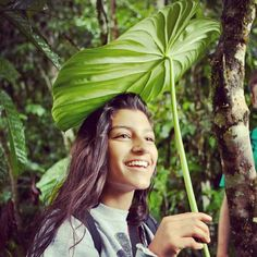 Check out how huge the leaves are in the rainforest in Volunteer Abroad, Change The World, Ecuador, Leaves, Children, Hair Styles, Amazing, Check, Nature