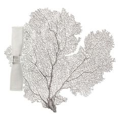 Coral Placemat - Set of 4 from Z Gallerie