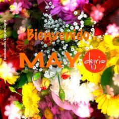 Bienvenido Mayo !!