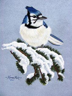 Blue Jay - Watercolor by Karen Park