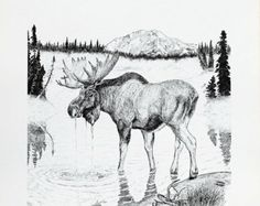 wildlife digi stamps | ... Print of pen and ink wildlife drawing, one of Alaska's Big Four