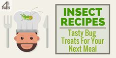 Insect Recipes: Tasty Bugs For Your Next Meal Off The Charts, Tasty, Yummy Food, Farms, Bugs, Insects, Nutrition, Meals, Drink