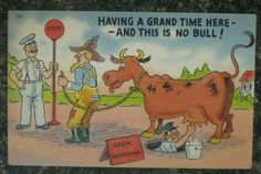 """comic postcard """"Having a grand time here--and this is no bull"""" milking cow Cow Art, Funny Comics, Vintage Postcards, Cows, Poster, Ebay, Fictional Characters, Collection, Farmer"""