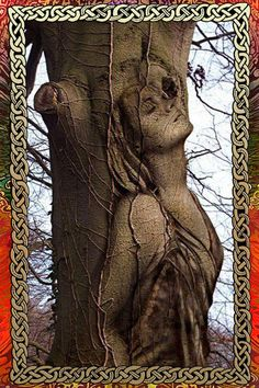 Amazing art sculpture in a tree Tree Carving, Carving Wood, Wood Carvings, Belle Photo, Oeuvre D'art, Urban Art, Wood Art, Amazing Art, Amazing Body
