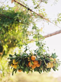 Greenery and fruits chandelier for summer wedding decor ideas Lustre Floral, Design Floral, Deco Floral, Orange Wedding Flowers, Orange Flowers, Wedding Greenery, Wedding Colors, Party Decoration, Wedding Decorations