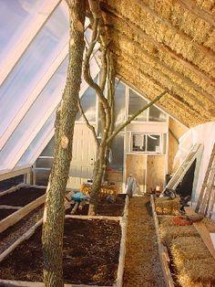 Straw bale greenhouse.