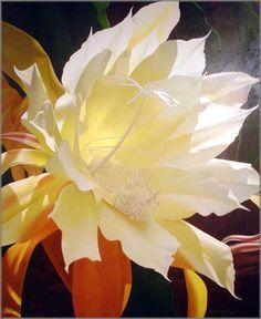 brian davis paintings -