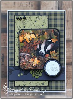 Crafting with Cotnob: Pollyanna Pickering British Wildlife Vol III Box Cards Tutorial, Card Tutorials, Birthday Cards For Men, Handmade Birthday Cards, Create And Craft Tv, Exploding Box Card, Hunkydory Crafts, Craftwork Cards, Anna Griffin Cards