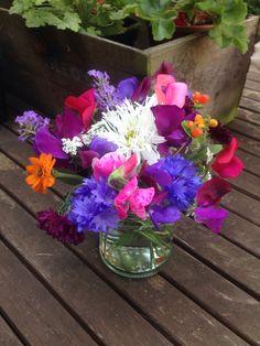 Zingy vibrant garden posy, 26th July. Lovely purples, blues, hot pink & orange