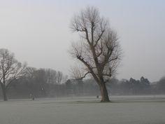 Den Haag - Zuiderpark