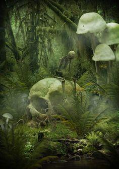 Randomness Of Mind (dverkys:   Where forest giantsrest)