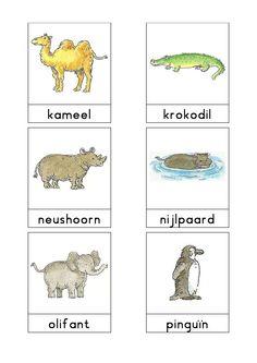 Woordkaarten Bas 'De dierentuin' 2 sorteeroefening