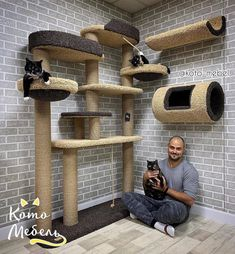 Cat Tree House, Cat House Diy, Cat Gym, Cat Hotel, Diy Cat Tree, Living With Cats, Cat Towers, Cat Shelves, Cat Playground