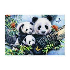 Img262 by Jenny Newland Panda Family, Panda Art, Paper Napkins For Decoupage, Little Panda, 5d Diamond Painting, Cute Panda, Cross Paintings, Blue Bird, Giclee Print