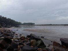 Enjoyed d company that night with d fellow beach. N nature speaks.
