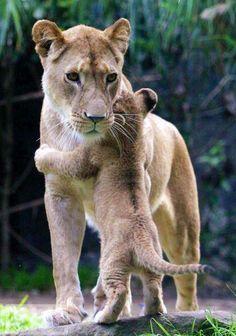 Mom & baby...