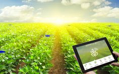 #IoT #AgriTech IoT #Agriculture #Market Analysis and Forecasts 2016 - 2021