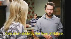 """Your knowledge of the animal kingdom has real world applications.   Community Post: 17 Ways You're The Charlie (From """"It's Always Sunny"""") Of Your Friend Group"""
