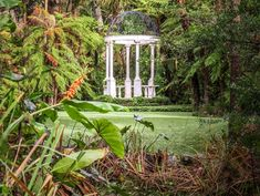 Home - Tui Hills Event Venues, Wedding Venues, Wedding Photos, Garden Venue, Outside Wedding, Bridal Flowers, Dance The Night Away, Table Centerpieces, Wedding Planner