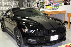 Matte Black Racing Stripes - Ford Mustang - Zilla Wraps