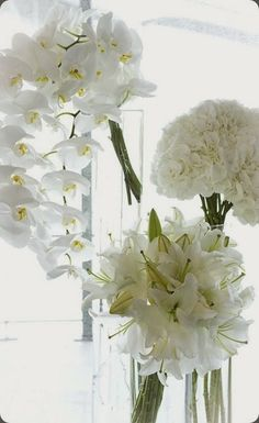 White blooms - use code WHITE for 25% off whites at www.leonany.com expires 7/10/14