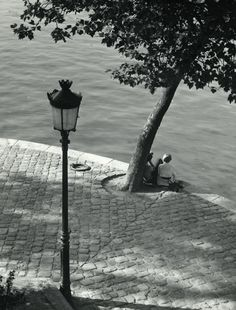 Couple in love under the tree along the Seine, Paris, 1956, Kees Scherer. Dutch (1920 - 1993)