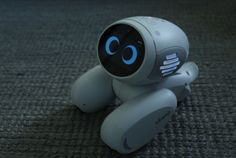 Meet Domgy an AI pet robot from Beijing startup ROOBO #Startups #Tech