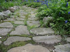 Garden Path- my parents did this with broken concrete and it's lovely *and free)