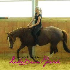 2 Tageskurs Liberty Bodenarbeit Freiarbeit / Freestyle Riding, Sa. 19.8.17 - So. 20.8.17 um 9:30-16:00 Uhr in 56456 Westerburg (Rheinland-Pfalz), Nicole Friedrich: Bodenarbeits- / Reitkurs Westerburg (Westerwald) Liberty für Anfänger und Fortgeschrittene & Zügelunabhängig Reiten mit Nicole Friedrich Themenunabhängiger Kurs Reiten: In diesem Kurs zeige ich euch Möglichkeiten, wie ihr euer Pferd entspannt und löst. Ziel ist zügelunabhängiges Reiten mit einem Pferd, [...] …