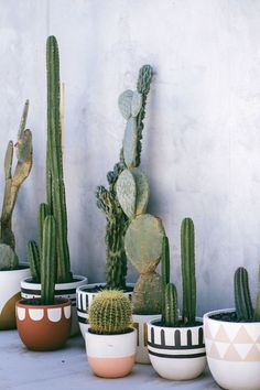 hottest trends for the year 2019 No. 7 - cactus arrangements - Home Decor The hottest trends for the year 2019 No. 7 - cactus arrangements - Home Decor -The hottest trends for the year 2019 No. 7 - cactus arrangements - Home Decor - Decoration Cactus, Decoration Plante, Pot Decoration Ideas, Cacti And Succulents, Potted Plants, Indoor Plants, Cacti Garden, Indoor Gardening, Container Gardening