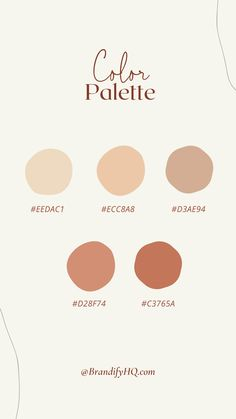 Hello creative entrepreneurs! I designed this brand color palette to evoke the feeling of Coachella. Using color psychology helps you choose brand colors that evoke the emotions you want to be associated with your business and communicate your brand story. Create the perfect brand color palette that connects with your ideal client! Get Brandify's FREE guide! #colorinspo #colorpalette #brandcolors #colorpsychology #joyful #joyfulcolors #brandingcolorpalette #brandingtips #colorpaletteforcoaches Hex Color Palette, Color Schemes Colour Palettes, Modern Color Schemes, Pastel Colour Palette, Web Design, Color Psychology, Pantone Color, Color Inspiration, Favorite Color
