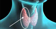 A pajzsmirigy rendellenességeit többféle módon is lehet hatékonyan kezelni! Natural Health Remedies, Tai Chi, Metabolism, Health Tips, Sausage, Healthy, Medicine, Home, Sausages