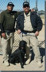 "Sheriffs News RELEASE: 2ND PAWS CANINE CADET FINDS ""FUREVER"" HOME"