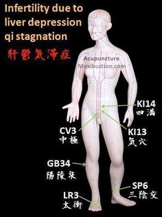 Fertility Enhancing Points used in Traditional Chinese Medicine - liver depression qi stagnation acupoints. http://www.acupuncturemoxibustion.com/acupuncture-points/fertility-acupuncture-points/chinese-points/ #AcupunctureUses