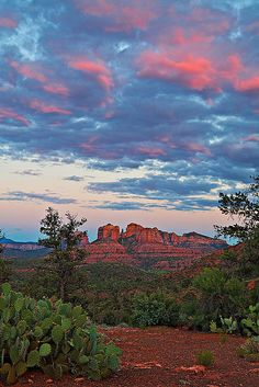 Sunset Sky Over Sedona, Cathedral Park, Arizona, USA.