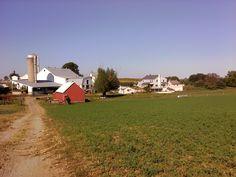Bennie & Katie Lapp farm - Belmont Road, Paradise, PA - Southern Lancaster County - September, 2010