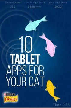 10 Tablet Apps For Your Cat! :)