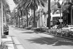 Sunday. Beverly Hills. On Fuiszart.com