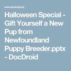 Halloween Special - Gift Yourself a New Pup from Newfoundland Puppy Breeder.pptx - DocDroid