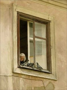 old woman and her birds