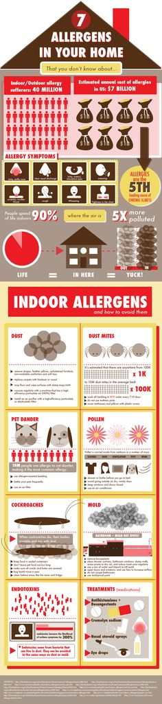 7 allergens in your home you may not know about  This infographic reveals how airborne irritants can be present year round — even in your house, where they can survive on carpets or couches and really aggravate your allergies.