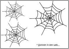 *Kleimat: Sinnen in een web!